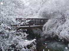 Mi puente nevado540209_408681419179387_214403342_n